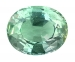 Natural Alexandrite Oval 7.46 cts
